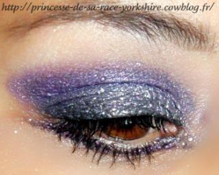 http://princesse-de-sa-race-yorkshire.cowblog.fr/images/19/SAM3791.jpg