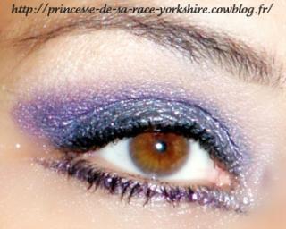 http://princesse-de-sa-race-yorkshire.cowblog.fr/images/19/SAM3824.jpg