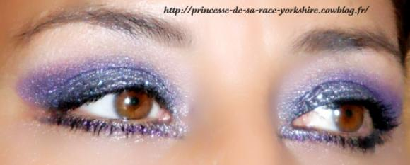 http://princesse-de-sa-race-yorkshire.cowblog.fr/images/20/SAM3816.jpg