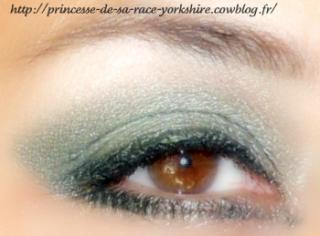 http://princesse-de-sa-race-yorkshire.cowblog.fr/images/20/SAM4156.jpg