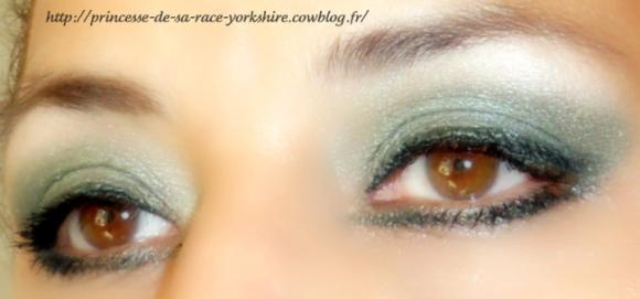 http://princesse-de-sa-race-yorkshire.cowblog.fr/images/20/SAM4157.jpg