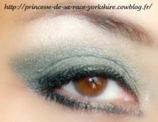 http://princesse-de-sa-race-yorkshire.cowblog.fr/images/20/SAM4169.jpg