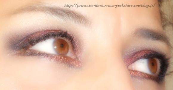 http://princesse-de-sa-race-yorkshire.cowblog.fr/images/20/SAM4182.jpg