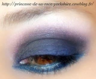 http://princesse-de-sa-race-yorkshire.cowblog.fr/images/20/SAM4292.jpg