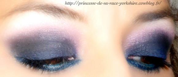 http://princesse-de-sa-race-yorkshire.cowblog.fr/images/20/SAM4293.jpg