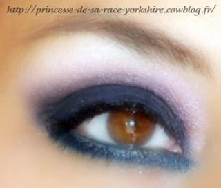 http://princesse-de-sa-race-yorkshire.cowblog.fr/images/20/SAM4350.jpg