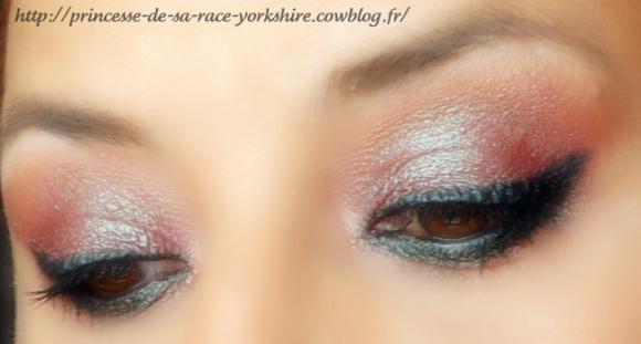 http://princesse-de-sa-race-yorkshire.cowblog.fr/images/20/SAM4452.jpg